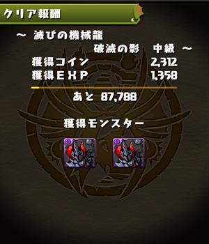 IMG_4961